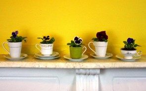 Old teacups and saucers make great little flower pots. Simply drill a hole in the bottom of the cup, plant the flower and place on a saucer. Design by Tiffany Threadgould.